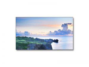 46 Zoll LED LCD - NEC MultiSync X463UN mieten